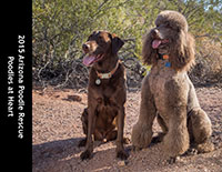 2015 Arizona Poodle Rescue Calendar